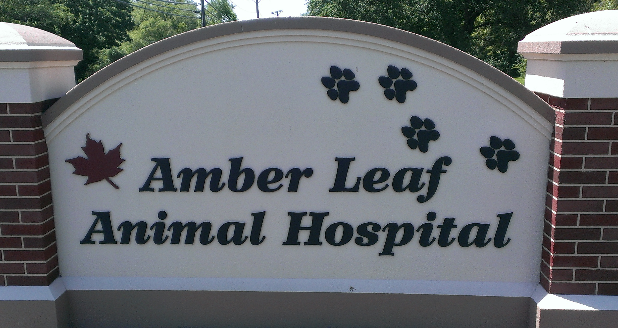 Amber Leaf Animal Hospital PNG